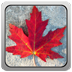 icon-canadian flag
